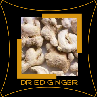 Ginger / Soonth