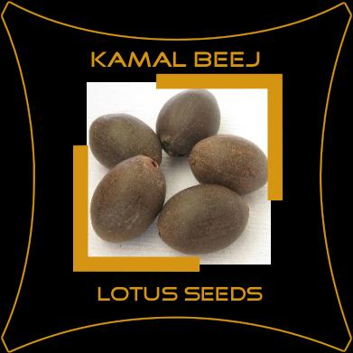 Kamal Beej