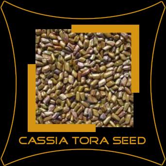Cassia Torae