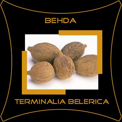 Behda